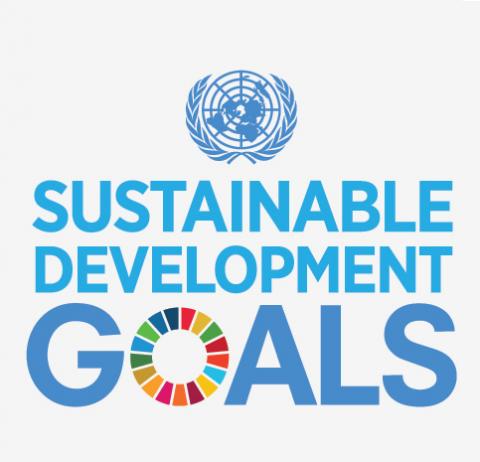 UN SDG Logo (CC)