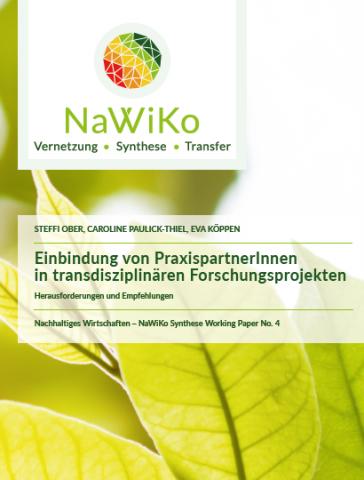 Die Abbildung zeigt das Titelblatt des Working Papers.
