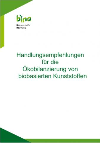 Titelseite Publikation Bina