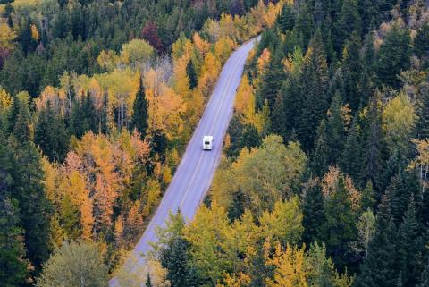 Stockphoto: A car driving down a road surrounded by trees