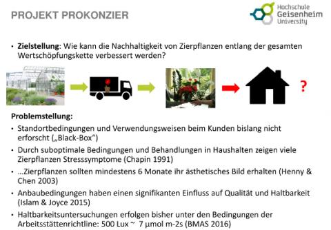 Präsentation ProKonZier