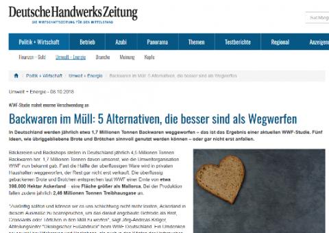 Screenshot Handwerkszeitung online